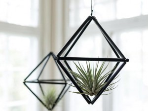 Himmeli mobile for air plants