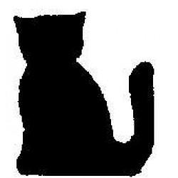 Craftpunch Cat