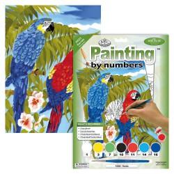 Paint by No. Junior 22,5cm x 30cm Parrots