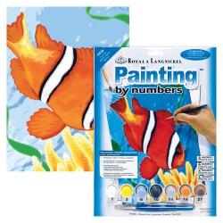 Paint by No. Junior 22,5cm x 30cm Clown fish
