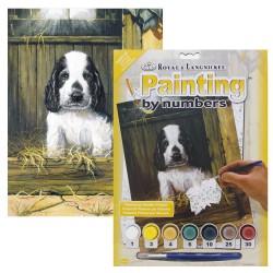 Paint by No. Junior 22,5cm x 30cm Spaniel puppy