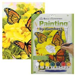 Paint by No. Junior 22,5cm x 30cm Majestic Monarchs