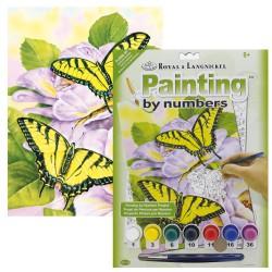 Paint by No. Junior 22,5cm x 30cm Swallowtail Butterflies
