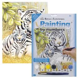 Paint by No. Junior 22,5cm x 30cm White Tiger Pair