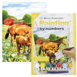 Paint by No.Junior 22,5x30cm. Horses