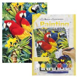Paint by No.Junior 22,5x30cm. Majestic Macaws