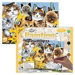 Paint by No. Junior 27,5cm x 35cm Cats montage