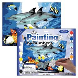 Paint by No. Junior 27,5cm x 35cm Dolphins