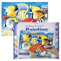 Paint by No. Junior 27,5cm x 35cm Tropical fish