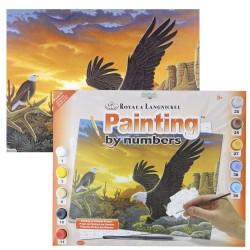 Paint by No.Junior L 27,5x35cm L Eagles