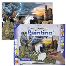 Paint by No.Junior L 27,5x35cm L Horses