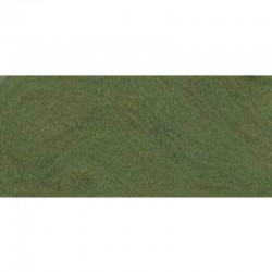 Merino Wool 100 % ± 50 gr Leaf Green