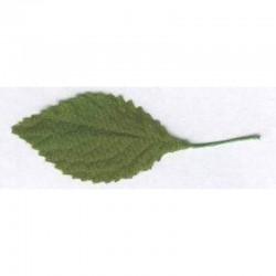 Leaf 5 cm green 100 pcs
