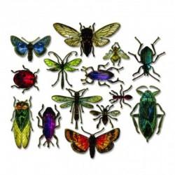 Framelits 14 pcs Tim Holtz, EntomologyDesign Measurements 6.03x3.18-2
