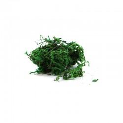 Glass globe fillers - green moss