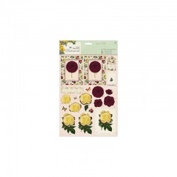 Botanicals - A4 Decoupage Pack - blousey flowers°