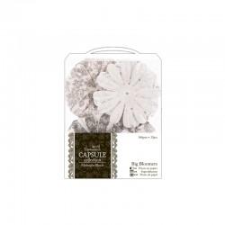 Capsule - Big bloomers 32pcs - Midnight blush