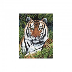 Paint by No. Junior 22,5cm x 30cm Tiger in Hiding