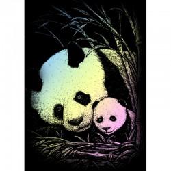 Carte à gratter mini 12,5x17,5cm Holographique Pandas