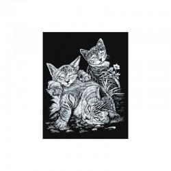 Carte à gratter  20,3x25,4cm argent.Chat+chatons