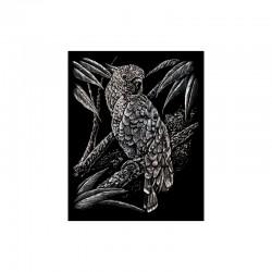 Engraving art.20,3x25,4cm silver. Cockatoo