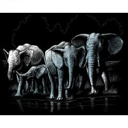 Engraving art.20,3x25,4cm silver. Elephant Herd