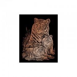 Carte à gratter 20,3x25,4cm cuivré.Tigres