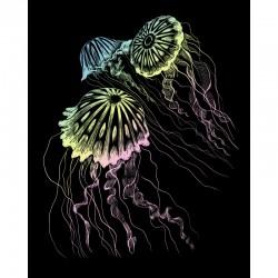 Engraving art.20,3x25,4cm Holographic Jellyfish