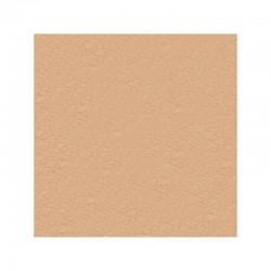 10 felt rectangles 30x20cm apricot