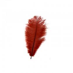 Ostrich feathers +-30cm 10pcs burgundy