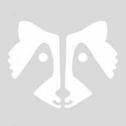 Mini stencil 8cm x 8cm - Raccoon