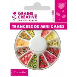 SLICES MINI CANES FRUIT ASS 12 MODELS