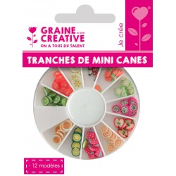 SLICES MINI CANES FRUIT EXOTIC FRUIT ASS 12 MODELS