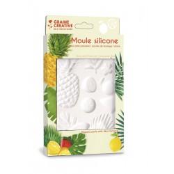 Silicone mold 13cm x 20cm - Exotic