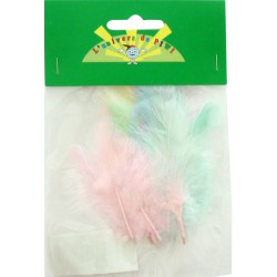 20 ROOSTER FEATHERS 7CM ASSORTED SHADES