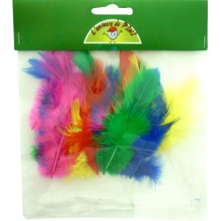 20 ROOSTER FEATHERS 7CM ASSORTED BRIGHT