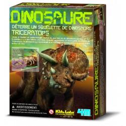 Kit DAM 220mm x 170mm - Triceratops