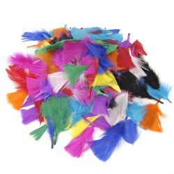 Feathers 5-9 cm ass. 20 gr