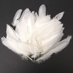 Feathers 15 cm white 15 gr